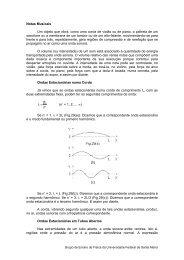 Notas Musicais - UFSM