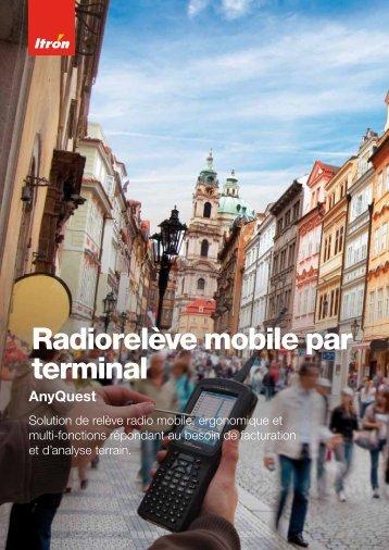 Radiorelève mobile par terminal - Itron