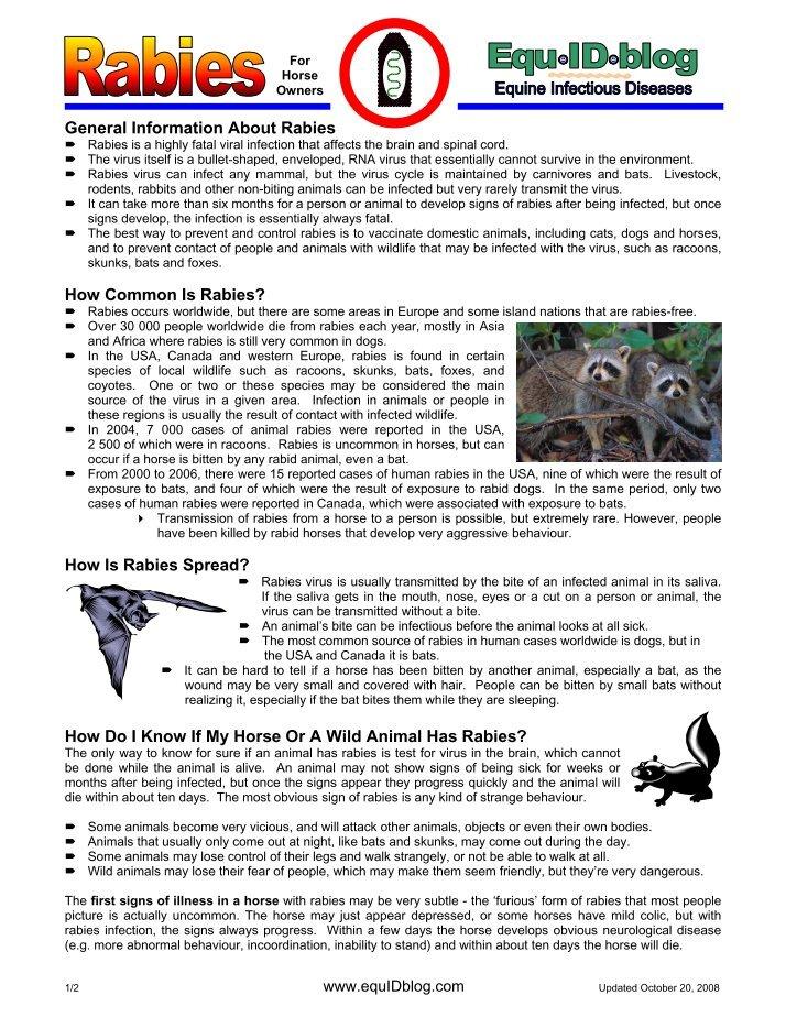 Rabid Horse Minnesota Worms Amp Germs Blog - 714×924