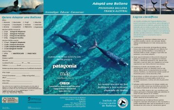 Adoptá una Ballena - Instituto de Conservación de Ballenas