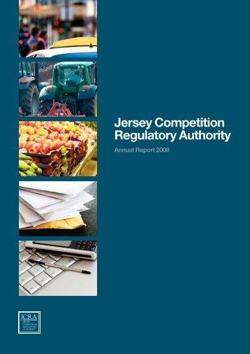 Annual Report 2008 - CICRA