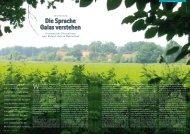 Die Sprache Gaias verstehen - Hagia Chora Journal