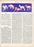 Untitled - Jugend - Page 3