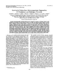 Survival of Subsurface Microorganisms Exposed to UV Radiation ...