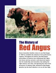 2009 HISTORY BROCHURE f#BE.qxd - Red Angus Association of ...
