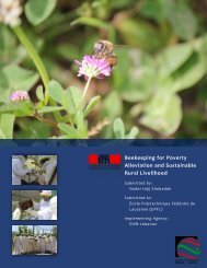 Beekeeping for Poverty Alleviation and Sustainable Rural Livelihood