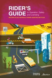 Rider's guide to operation, safety and licensing for - Southland ...