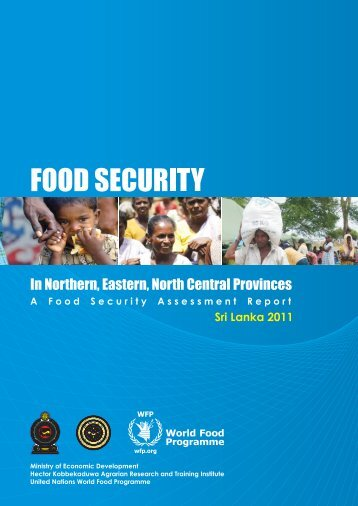 Food Security Assessment - WFP Remote Access Secure Services