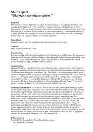 Rapporten - Norsk Landbruksrådgiving Agder