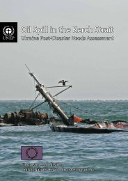 Oil Spill in the Kerch Strait - Disasters and Conflicts - UNEP