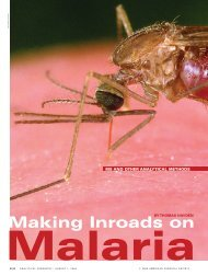 Making Inroads on Malaria - American Chemical Society Publications