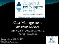 Case Management an Irish Model - EBIS