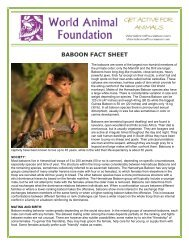 BABOON FACT SHEET - World Animal Foundation
