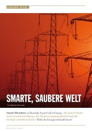 SMARTE, SAUBERE WELT - Smart Grids