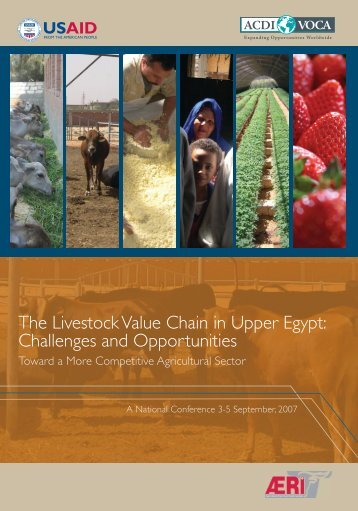 The Livestock Value Chain in Upper Egypt - ACDI/VOCA