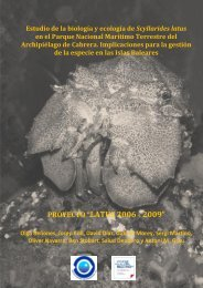 Latus2006-2009 Informe Final.pdf - El Instituto Español de ...
