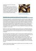 Varroa bestrijden - ZeelandNet - Page 6