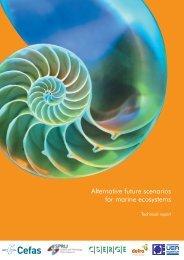 Alternative future scenarios for marine ecosystems - meece