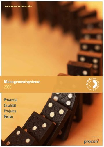 Prozesse Qualität Projekte Risiko Managementsysteme 2009