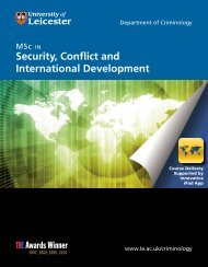 Security, Conflict and International Development - University of ...