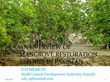 AN OVERVIEW OF MANGROVE RESTORATION EFFORTS IN ...
