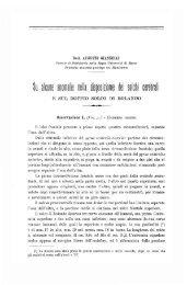 E SUL DOPPIO SOLCO DI ROLANDO - Isita-org.com