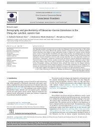 Petrography and geochemistry of Paleocene–Eocene limestones in ...