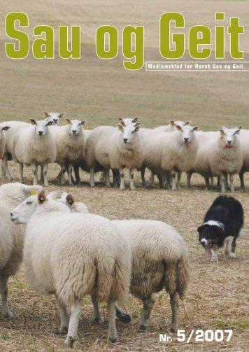 Nr. 5/2007 - Norsk Sau og Geit