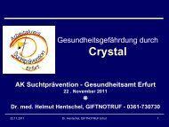 Präsentation Crystal_Erfurt_20111122_web.pdf