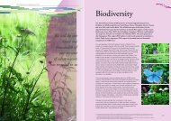 Biodiversity - North Wessex Downs Area of Outstanding Natural ...