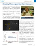 Androgen-Independent Growth of Prostate Cancer Cells Induced by ... - Page 7