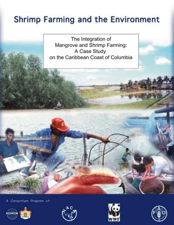 The Integration of Mangrove and Shrimp Farming - Library - Network ...
