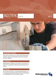 IND|TRYK Juni 06 - Københavns Tekniske Skole