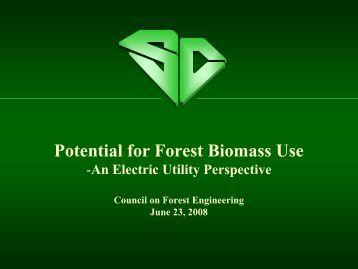 An Electric Utility Perspective, Liz Kress - Santee Cooper