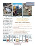 CBW PR Sheet 2:18:11 - The Beer Connoisseur - Page 2