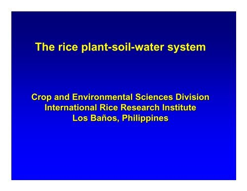 The rice plant-soil-water system - Rice Knowledge Bank ...