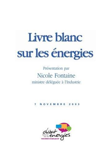 Livre blanc sur les énergies : L'offre d'énergie - Vie publique