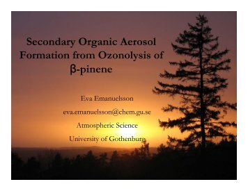 presentation - Summer School on Organic Aerosols