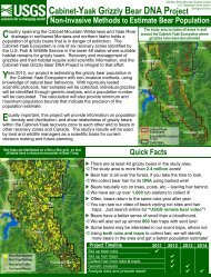 Cabinet-Yaak Grizzly Bear DNA Project - Northern Rocky Mountain ...