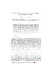 Surface Reconstruction of Scenes Using a Catadioptric ... - Lasmea