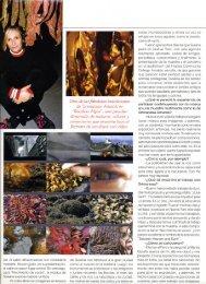Page 1 refugia en tends agudas. edrnd la rnuerte. netas ...