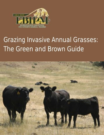 """Green and Brown"" Grazing Strategy"
