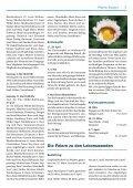 Pfarreiblatt Nr. 7 - Pfarrei-ruswil.ch - Seite 5