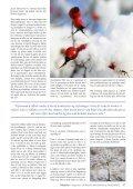 Karma og Dharma i nytt perspektiv - Ildsjelen - Page 4