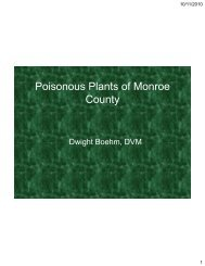 Poisonous Plants of Monroe County - NBHA Illinois District 05