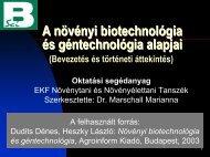 pdf 4003 Kb