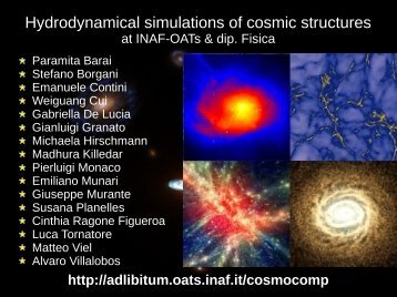Hydrodynamical simulations of cosmic structures
