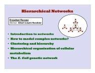 Hierarchical Networks - Erzsébet Ravasz Regan