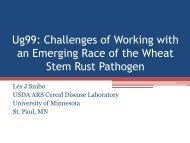 Molecular diagnostics of rust fungi: lessons learned from Ug99