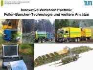 Innovative Verfahrenstechnik: Feller-Buncher-Technologie und ...